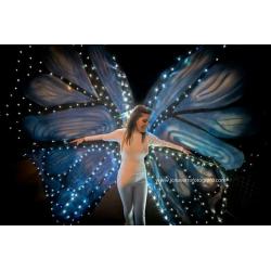 Mariposas de luz