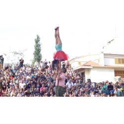 Adoro - Circ