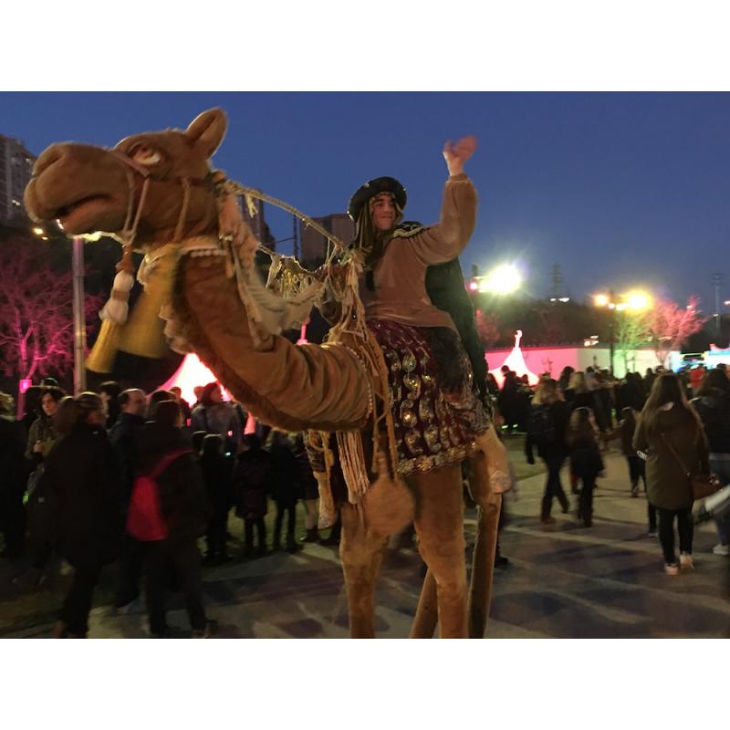 Camell en xanques